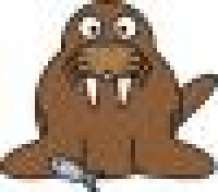 IncognitoWalrus